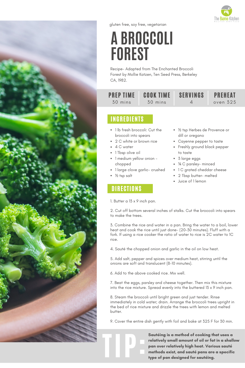 Recipe 2 - A BROCCOLI FOREST